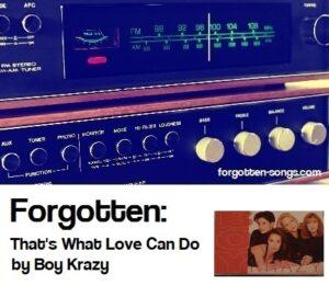 Forgotten: That's What Love Can Do by Boy Krazy.